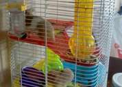 Vendo hamster + gaiola + comida