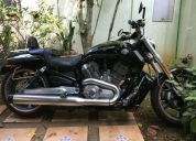 Oportunidade! moto harley davidson muscle  - 2013