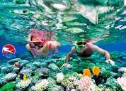 Curso de mergulho - sp mergulho
