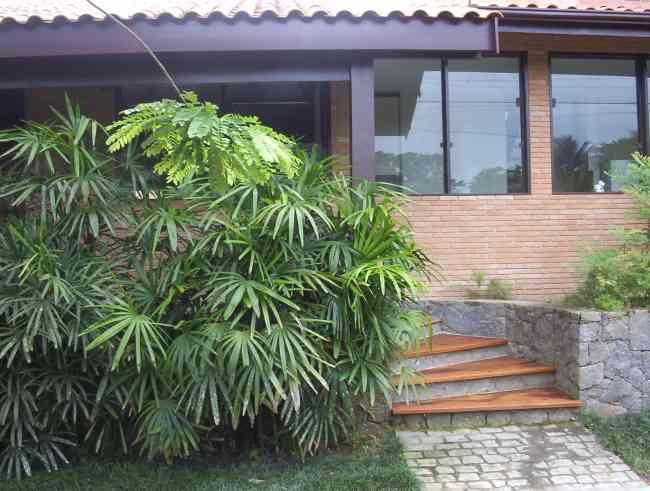 PEDREIRO EM UBATUBA SP