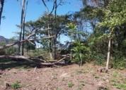Lote inteiro de 360 m em itaipu mara vista, contactarse.