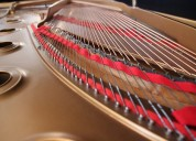 Avaliador de pianos acústicos