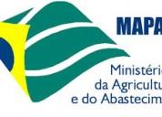Assessoria mapa ministerio agricultura