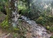 Vendo excelente sitio 14 hectare 350 000 00