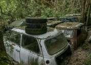 Buggy buggy 1983, contactarse