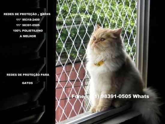 Redes de Proteção no Parque Pinheiros, 98391-0505