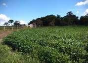 Excelente fazenda em monte alegre 07 alqueires monte alegre .