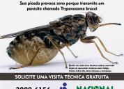 Dedetizadora de mosquitos nacional